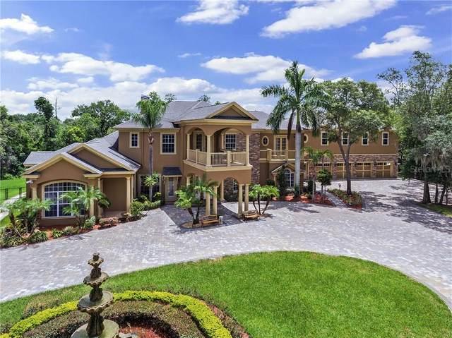 5649 N Dean Road, Orlando, FL 32817 (MLS #O5876231) :: Pepine Realty