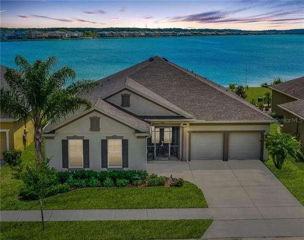 293 Blue Cypress Drive, Groveland, FL 34736 (MLS #O5876321) :: Team Bohannon Keller Williams, Tampa Properties
