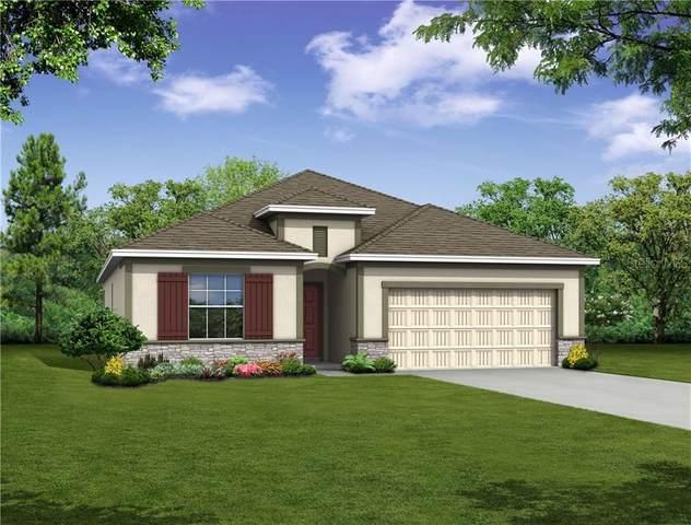 311047 Jazz Leaf Place, San Antonio, FL 33576 (MLS #O5876366) :: Burwell Real Estate