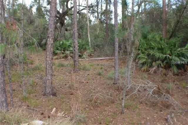 Rambling Oak Boulevard, Orlando, FL 32832 (MLS #O5876407) :: Bustamante Real Estate