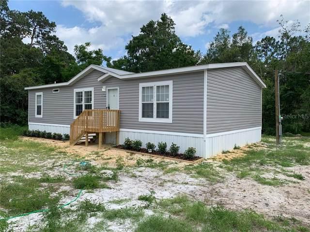 121 Palmland Avenue, Satsuma, FL 32189 (MLS #O5876579) :: Gate Arty & the Group - Keller Williams Realty Smart