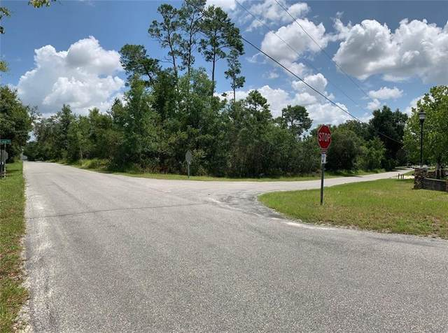 126 Lake Drive, Debary, FL 32713 (MLS #O5876883) :: Rabell Realty Group