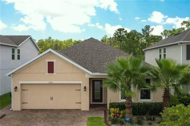 3902 Prairie Reserve Boulevard, Orlando, FL 32824 (MLS #O5876892) :: Rabell Realty Group