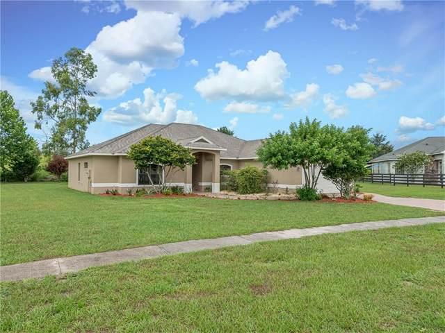 13433 Casa Verde Circle, Astatula, FL 34705 (MLS #O5876956) :: Team Bohannon Keller Williams, Tampa Properties