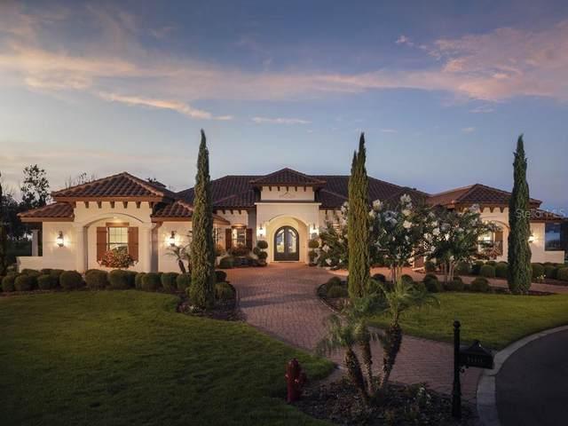29911 Osprey Court, Tavares, FL 32778 (MLS #O5877247) :: Team Bohannon Keller Williams, Tampa Properties