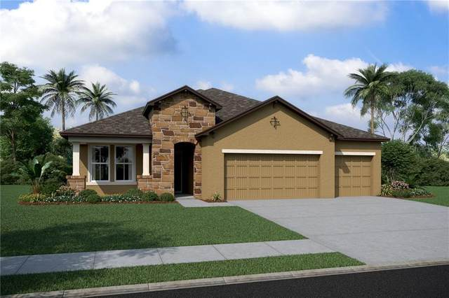 11929 Tetrafin Drive #1103, Riverview, FL 33579 (MLS #O5877274) :: Team Bohannon Keller Williams, Tampa Properties