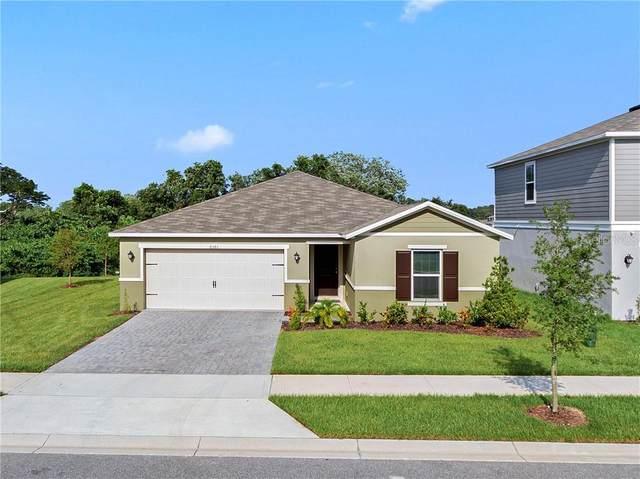 6361 Domenico Court, Groveland, FL 34736 (MLS #O5877330) :: Team Pepka