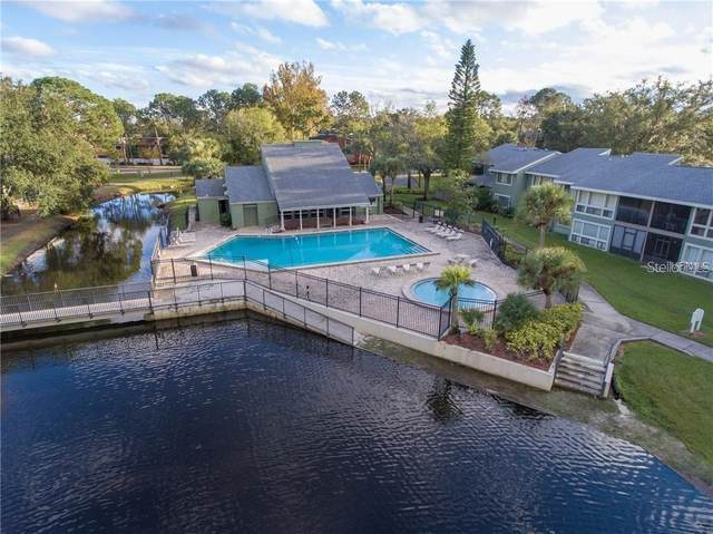 6066 Peregrine Avenue C06, Orlando, FL 32819 (MLS #O5877356) :: Mark and Joni Coulter | Better Homes and Gardens