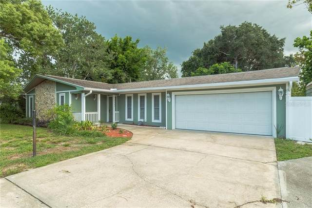 2904 Sabal Palm Drive, Edgewater, FL 32141 (MLS #O5877446) :: Alpha Equity Team