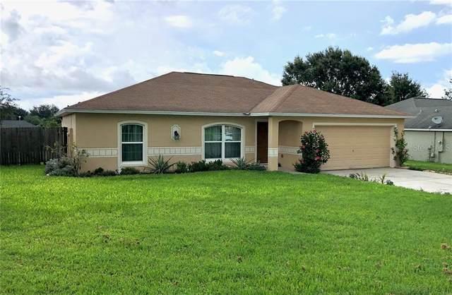 4009 Lake Bluff Drive, Mascotte, FL 34753 (MLS #O5878352) :: Key Classic Realty