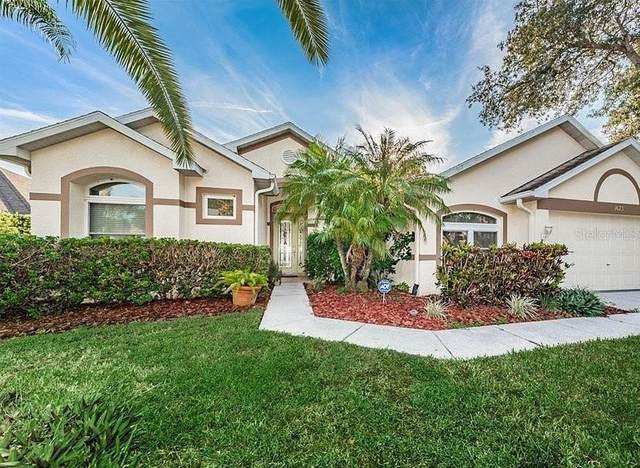 1673 Oak Park Court, Tarpon Springs, FL 34689 (MLS #O5878685) :: Sarasota Property Group at NextHome Excellence