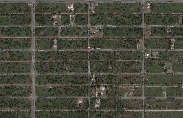 Pandora Drive, Indian Lake Estates, FL 33855 (MLS #O5879423) :: Team Bohannon Keller Williams, Tampa Properties