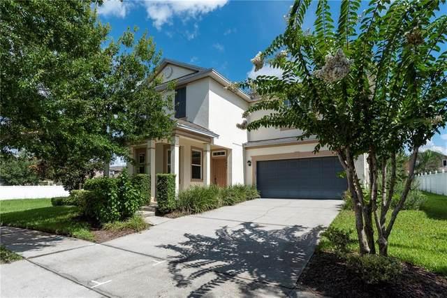 12993 Emersondale Avenue, Windermere, FL 34786 (MLS #O5879476) :: The Light Team