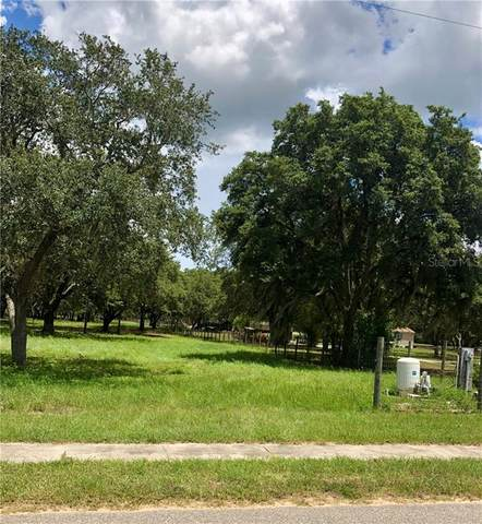 Tennessee Avenue, Astatula, FL 34705 (MLS #O5879653) :: Rabell Realty Group