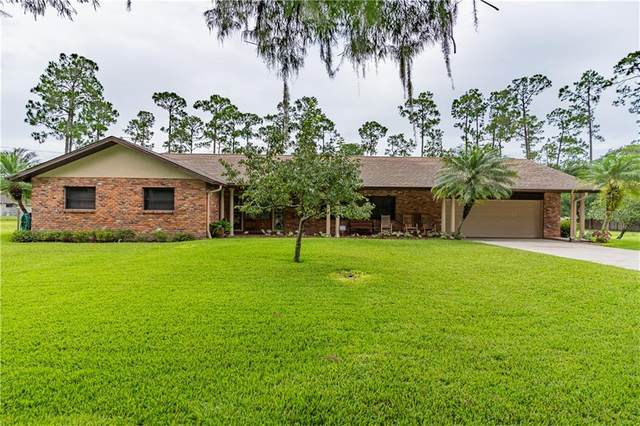 14610 Henson Road, Orlando, FL 32832 (MLS #O5879805) :: The Duncan Duo Team