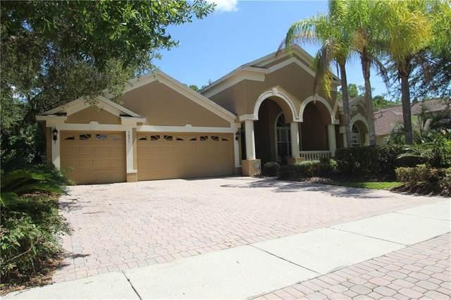 5021 Devon Park Drive, Tampa, FL 33647 (MLS #O5880951) :: Bustamante Real Estate