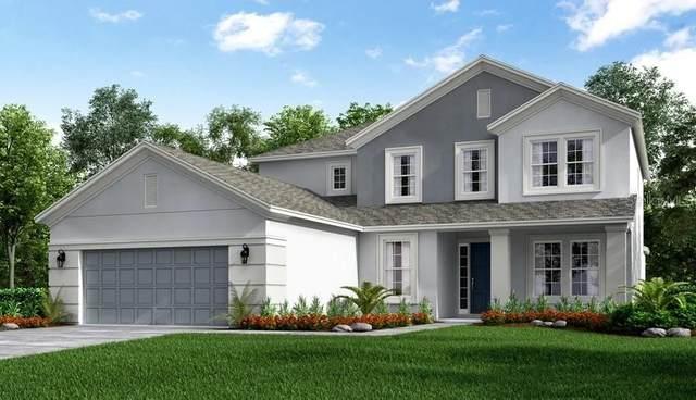 3447 Buoy Circle, Winter Garden, FL 34787 (MLS #O5881537) :: Team Bohannon Keller Williams, Tampa Properties