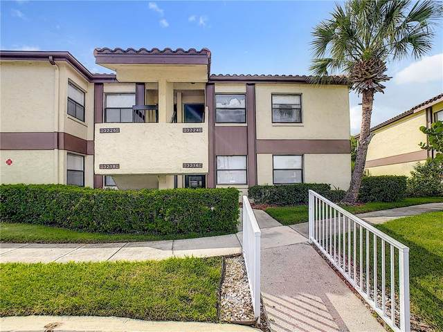 3224 Candle Ridge Drive #204, Orlando, FL 32822 (MLS #O5881894) :: Cartwright Realty