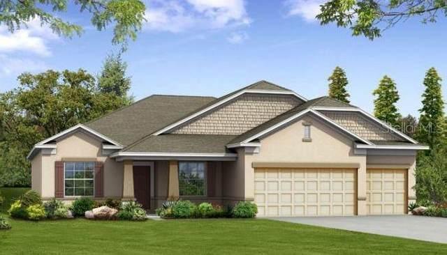 1842 Forest Glen Drive, Fruitland Park, FL 34731 (MLS #O5881913) :: Cartwright Realty
