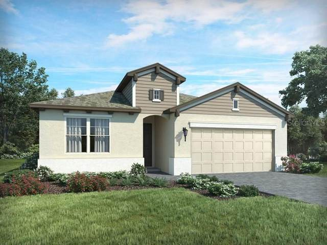 541 Bellissimo Place, Howey in the Hills, FL 34737 (MLS #O5881976) :: Cartwright Realty