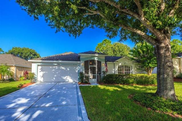 4122 Hammersmith Drive, Clermont, FL 34711 (MLS #O5882017) :: Cartwright Realty