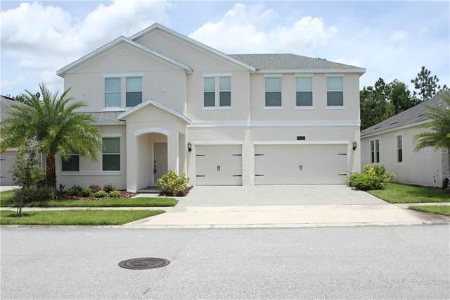 4648 Fairy Tale Circle, Kissimmee, FL 34746 (MLS #O5882137) :: Cartwright Realty