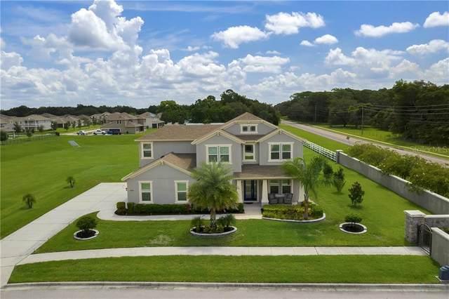 4009 Loblolly Oak Lane, Apopka, FL 32712 (MLS #O5882205) :: New Home Partners