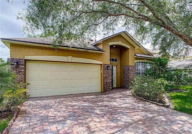 4713 Riverton Drive, Orlando, FL 32817 (MLS #O5882400) :: New Home Partners
