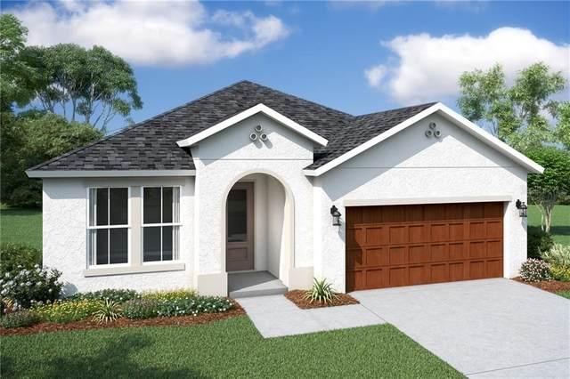 13945 Nesbit Court, Hudson, FL 34669 (MLS #O5882554) :: McConnell and Associates