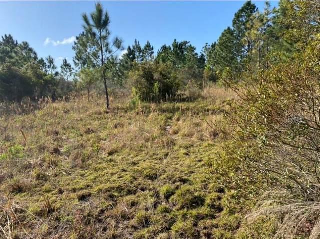 18638 Reynolds Parkway, Orlando, FL 32833 (MLS #O5882609) :: Dalton Wade Real Estate Group