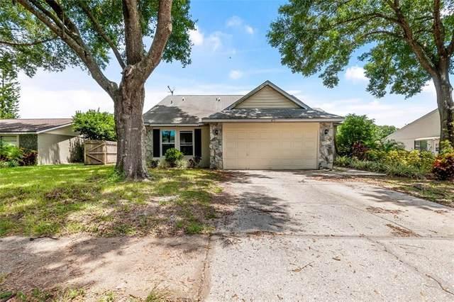 5813 Silver Moon Avenue, Tampa, FL 33625 (MLS #O5882667) :: Cartwright Realty