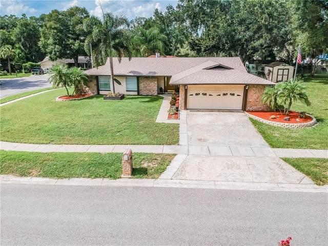 608 E Lakeshore Drive, Ocoee, FL 34761 (MLS #O5882740) :: BuySellLiveFlorida.com