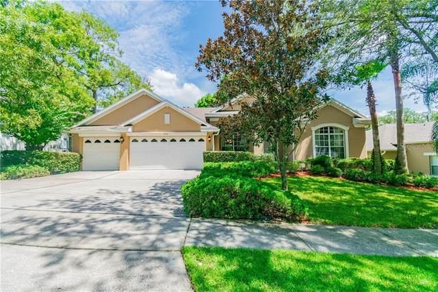538 Majestic Oak Drive, Apopka, FL 32712 (MLS #O5882830) :: Team Bohannon Keller Williams, Tampa Properties