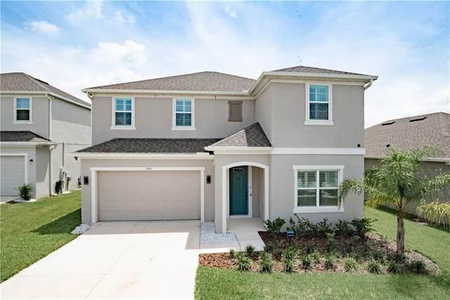 908 Grand Hilltop Drive, Apopka, FL 32703 (MLS #O5882855) :: New Home Partners