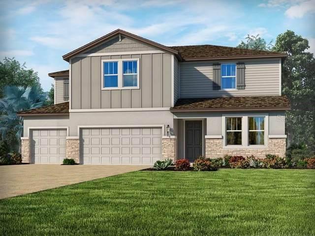 1805 Juniper Hammock Street, Winter Garden, FL 34787 (MLS #O5883401) :: BuySellLiveFlorida.com