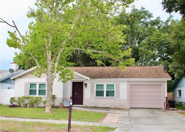 2378 Grove Valley Avenue, Palm Harbor, FL 34683 (MLS #O5883413) :: Delta Realty Int