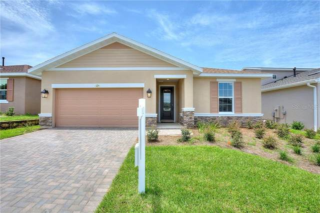127 Silver Maple Road, Groveland, FL 34736 (MLS #O5883488) :: Rabell Realty Group