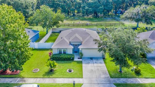 127 Zachary Wade Street, Winter Garden, FL 34787 (MLS #O5883490) :: New Home Partners