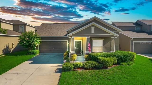 1113 Seburn Road, Apopka, FL 32703 (MLS #O5883506) :: Team Bohannon Keller Williams, Tampa Properties