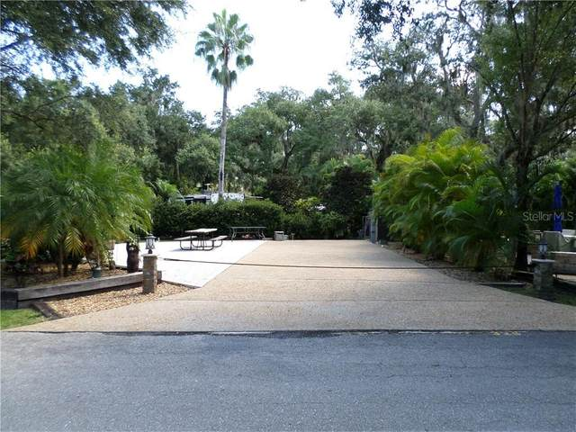 328 Bobcat Lane, River Ranch, FL 33867 (MLS #O5883535) :: Alpha Equity Team