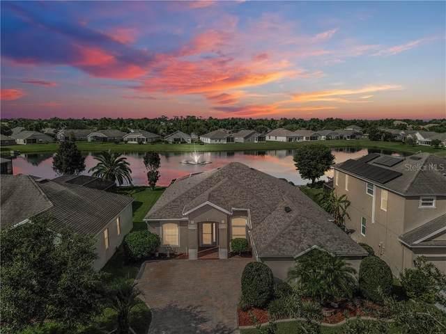13327 Fox Glove Street, Winter Garden, FL 34787 (MLS #O5883568) :: Cartwright Realty