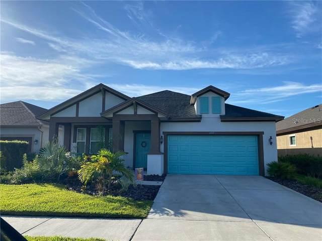 6919 Makers Way, Apollo Beach, FL 33572 (MLS #O5883627) :: The Robertson Real Estate Group