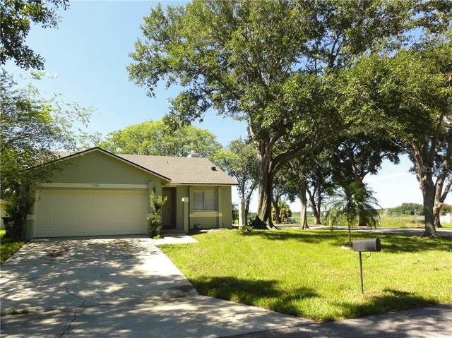 7183 Marvista Court, Orlando, FL 32835 (MLS #O5883709) :: Mark and Joni Coulter | Better Homes and Gardens