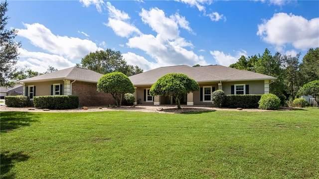 28132 County Road 46A, Sorrento, FL 32776 (MLS #O5883788) :: Team Bohannon Keller Williams, Tampa Properties
