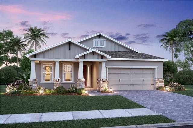 6110 Sea Air Drive #3414, Apollo Beach, FL 33572 (MLS #O5883865) :: The Robertson Real Estate Group