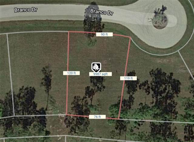 16214 Branco Drive, Punta Gorda, FL 33955 (MLS #O5883953) :: Team Borham at Keller Williams Realty