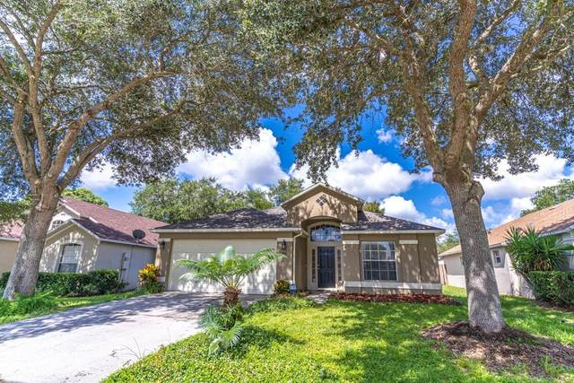 88 Pine Forest Place, Apopka, FL 32712 (MLS #O5884236) :: The Duncan Duo Team