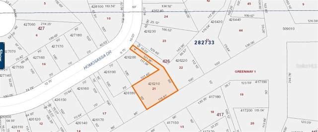 1322 Homosassa Drive, Poinciana, FL 34759 (MLS #O5884398) :: Cartwright Realty