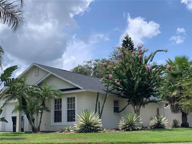 1201 Sheeler Hills Drive, Apopka, FL 32703 (MLS #O5884645) :: Team Bohannon Keller Williams, Tampa Properties