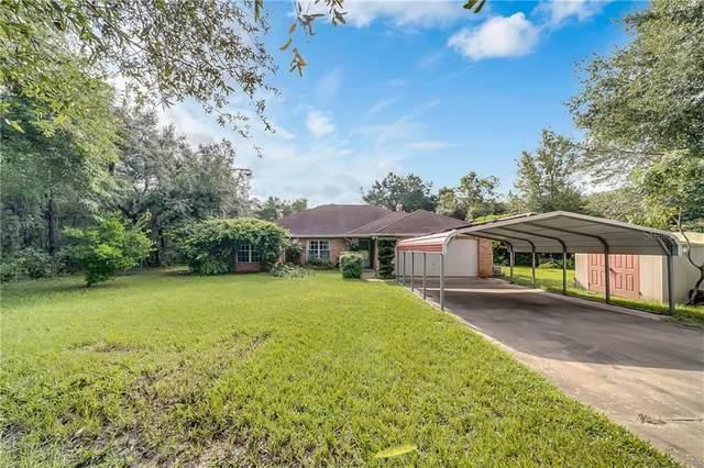 690 Werley Trail, Orange City, FL 32763 (MLS #O5884852) :: Burwell Real Estate